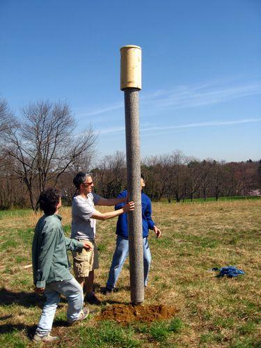 Raising kestrel box 3